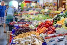 jídlo v potravinové bance